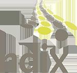 NDIX ddos protection