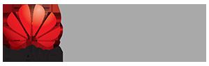 Huawei atic logo